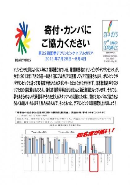 2013ソフィアピンバッジ販売_カンパ願い2